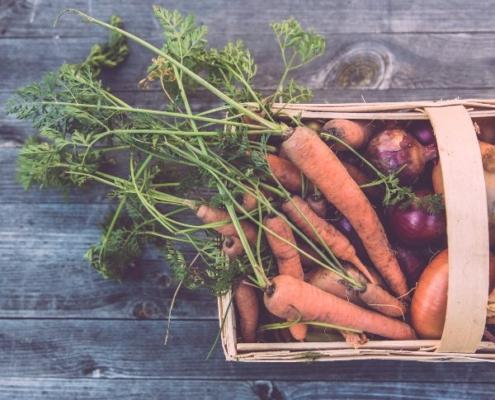 determinación de pesticidas en alimentos