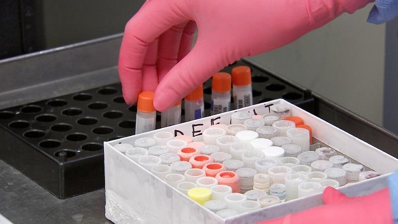 laboratorio incubadora científicos equipos cromtek healforce