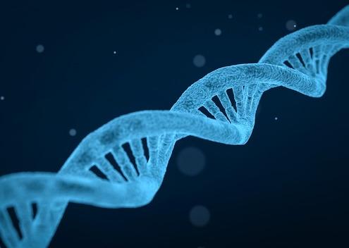 Estudio farmogenético genetica medicamentos pacientes genes