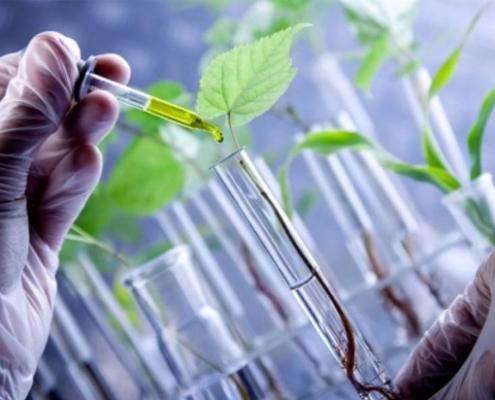Bioinsumos biotecnología equipos de laboratorio investigación